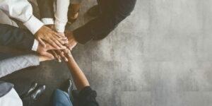 De succesformule van samenwerken