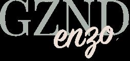 Logo GZNDenzo